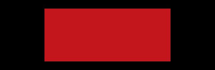 palm-tran-1.png
